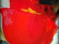 320-tulip
