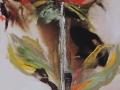 coolpix201210skilderyeindiehuisnou-106